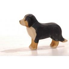 Hund - Berner Sennen