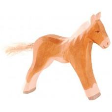 Häst - Föl, fux