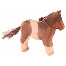 Häst - Ponny