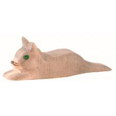 Katt - kattunge, grå