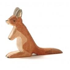 Känguru, unge