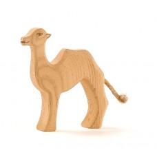 Kamel, unge