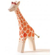 Giraff, stor, springande