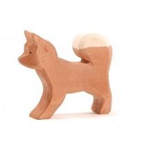 Hund - Lapphund