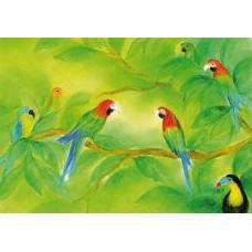Vykort - BeD1018 - Papegojor