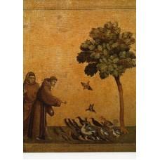 Vykort - R0701 - Fransiskus - Fågelpredikanten