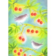 Vykort - R5251 - Fåglar på körsbärsgren