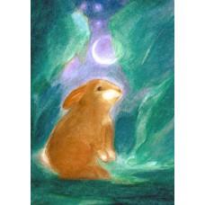 Vykort - Wr34 - Hare i månsken