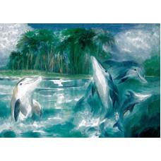 Vykort - Vr001 - delfiner