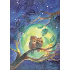 Vykort - Vr072 - Ugglor i månsken