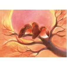 Vykort - Vr082 - Fåglar i vintersol