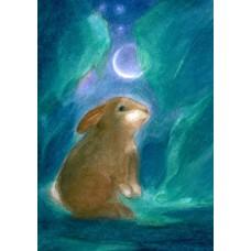 Vykort - Vr34 - Hare i månsken