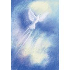 Vykort - MvZ331 - Spirit - Duva