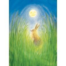 Vykort - MvZ342 - Haren och månen