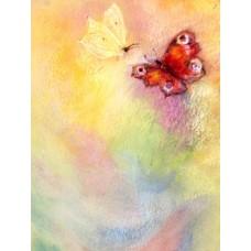 Vykort - MvZ416 - Fjärilar