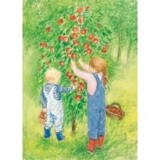 Vykort - MvZ445 - Barn plockar äpplen