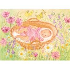 Vykort - MvZ452 - Baby i korg på blomsteräng