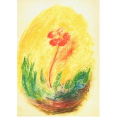 Vykort - Zb01 - Blomma i ljus