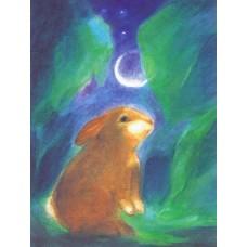 Poster - Wp1001 - Hare i månljus